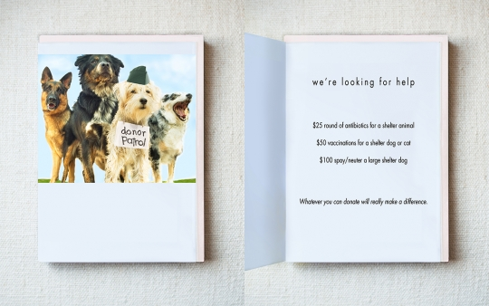 Plea for donations greeting card hooray for the underdog plea for donations greeting card m4hsunfo